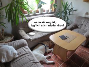 Sofa_Anschleich