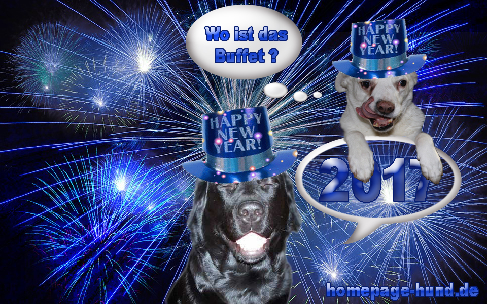 Hundeblog2017 Happy New Year