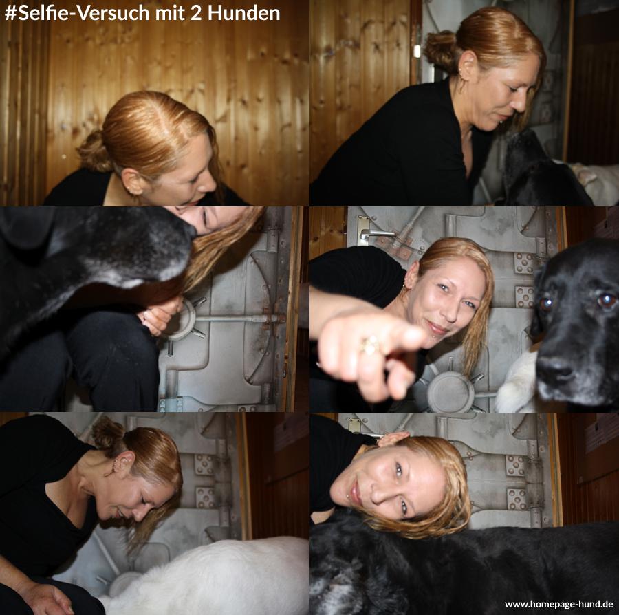 Selfie Hunde