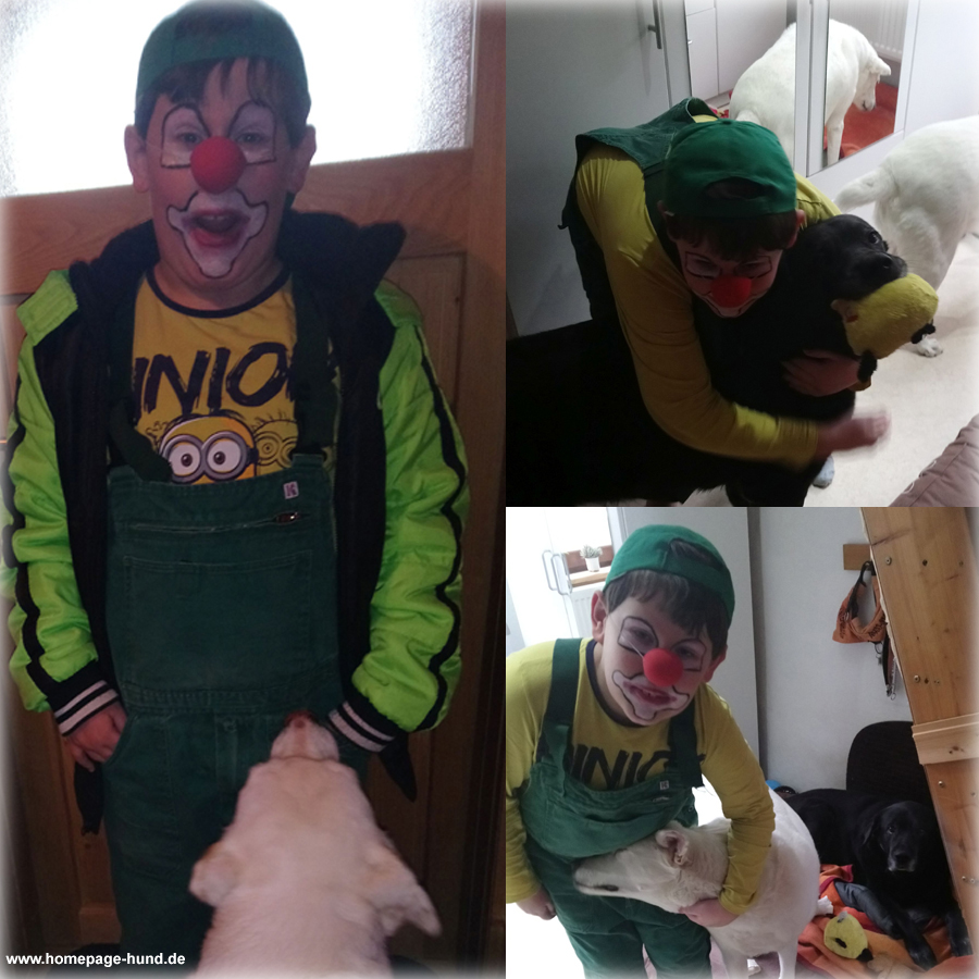 Karneval Hund Clown