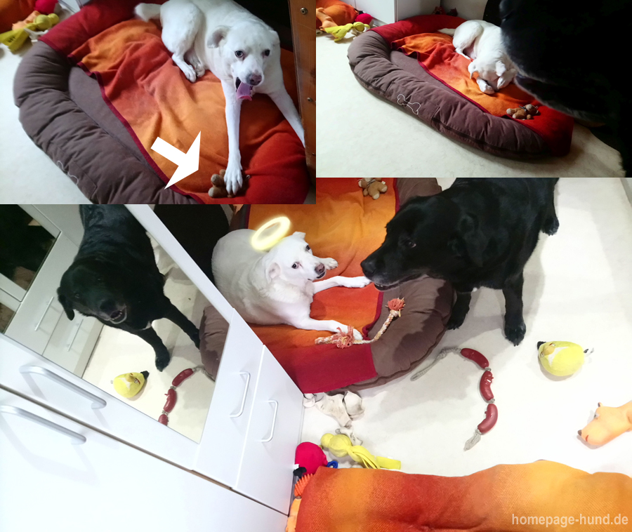 Ich hab` mit Monas Teddy gespielt ...