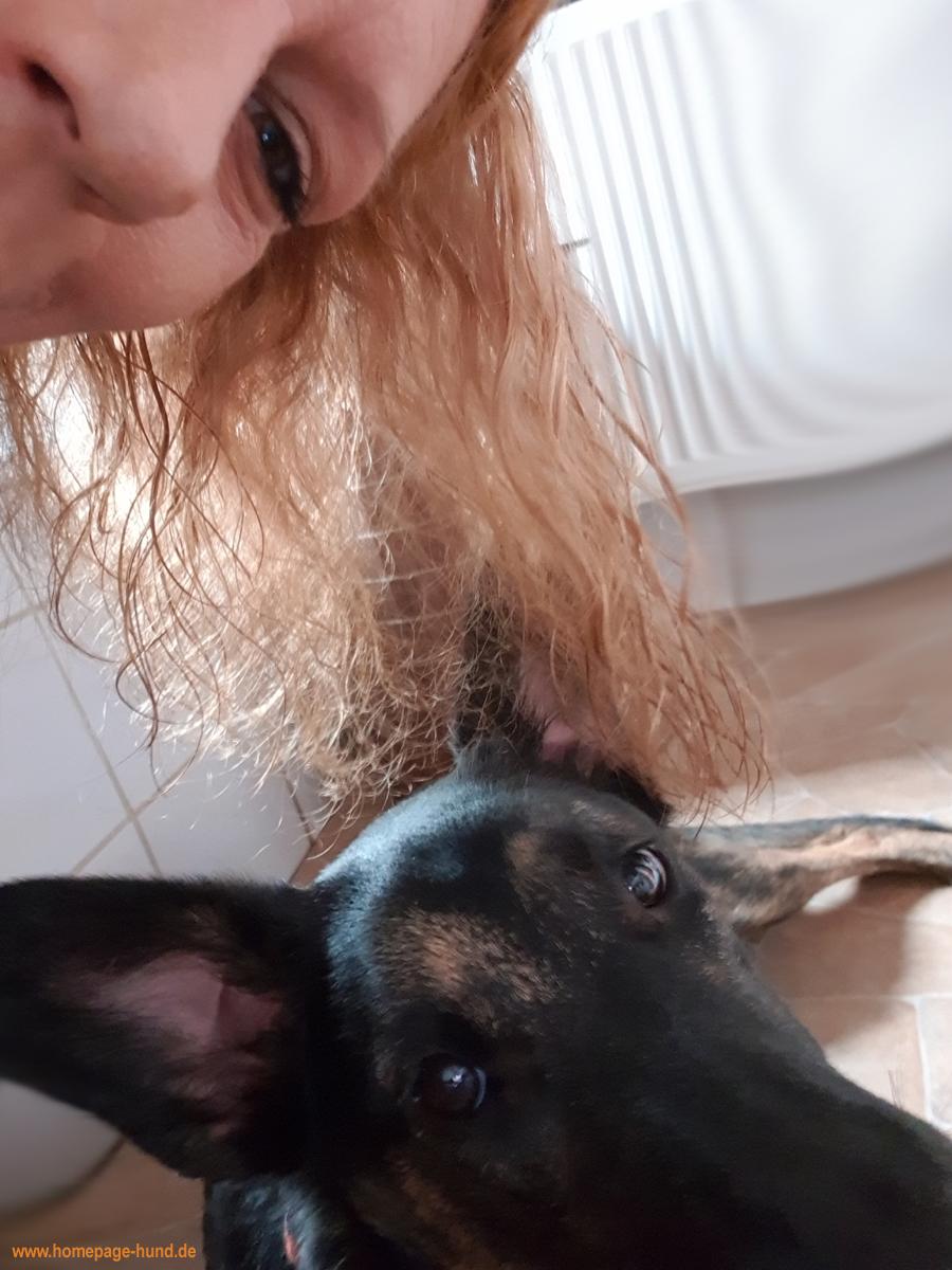 Selfi Hund