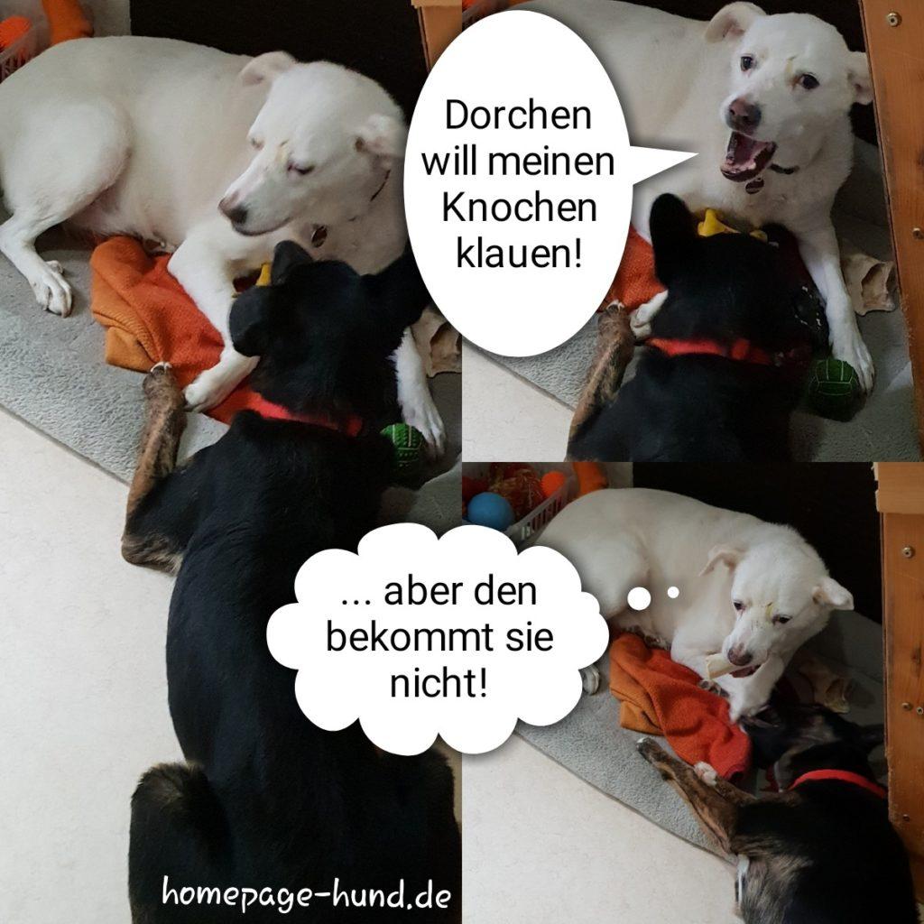 Knochenklau