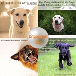Download Hundesprüche mit Bild kostenlos