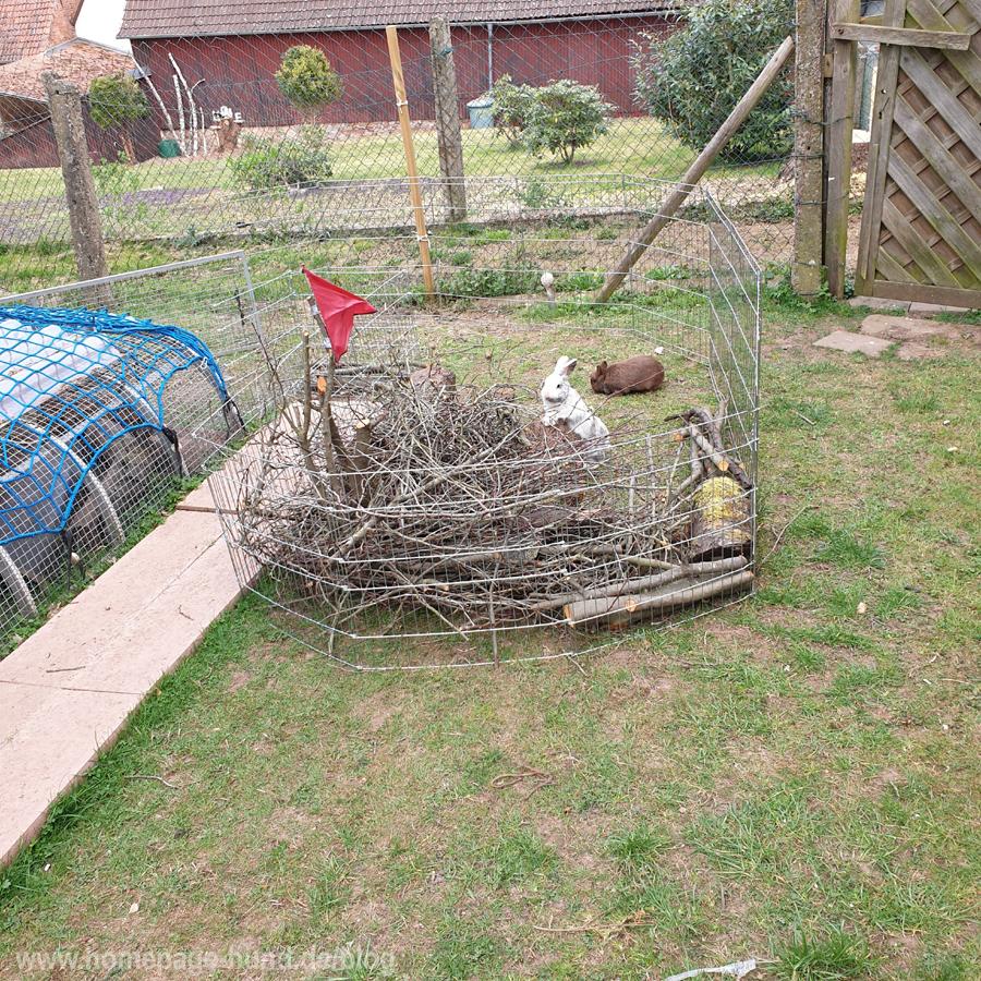 Kaninchenstall Aussengehege Kaninchen Hasen