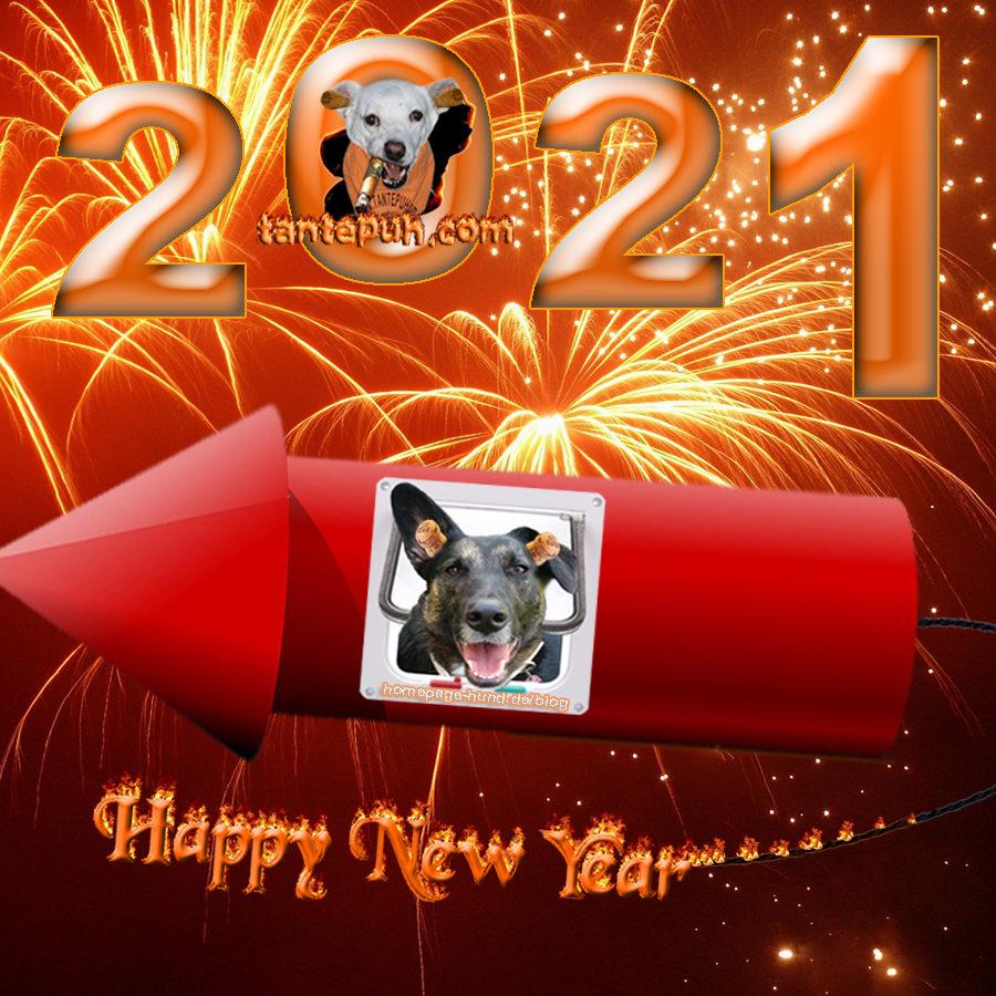 Guten Rutsch & ein frohes, neues Jahr !!!