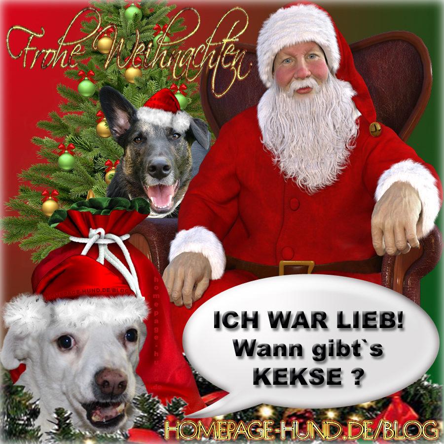 Merry Wuffmas