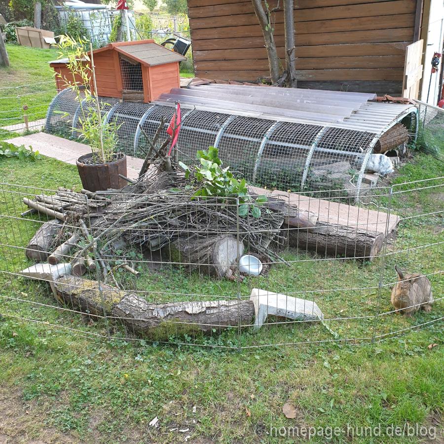 Kaninchengehege vor dem Brand