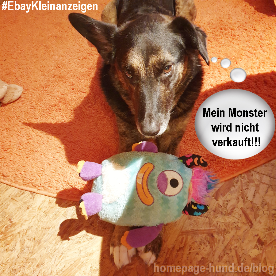 und warum Mama jetzt Karl heißt: Frauchen hat für Kalli größere Hundekörbe und ein XL-Hundebett gekauft, damit er es im Alter weich hat. Nun ist er leider verstorben und Frauchen will alles verkaufen, um die Rechnungen der Tierklinik zu bezahlen. Frauchen sagt, 4 Körbe reichen für mich (finde ich nicht). Wo sie gerade in Fahrt war, ist sie die Spielsachen vom Junior durchgegangen, aber mein Monster gibt es nicht und mich auch nicht! Frauchen heißt deshalb Karl Roman auf Ebay, weil Frauen manchmal unmoralische Angebote bekommen, also hat sie Papas Namen genommen. Also schaut mal, ob ihr was gebrauchen könnt : https://www.ebay-kleinanzeigen.de/s-bestandsliste.html?userId=86830235