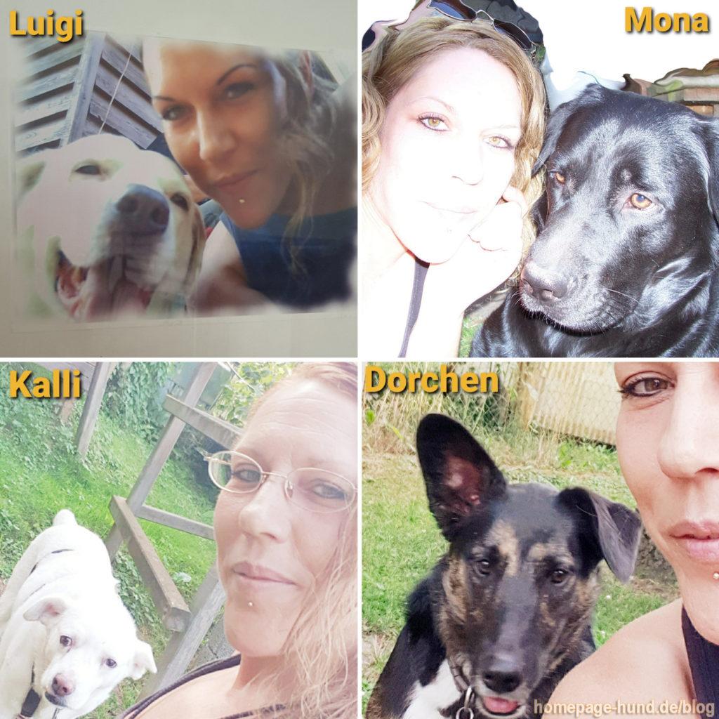 Die letzen 30 Jahre. Von Kaninchen Giorgio und Knuffel habe ich leider keine Fotos mehr. Luigi aus Süditalien, mein erster Hund, wurde 15 Jahre und lernte noch kurz Mona kennen, die mit 3 Monaten zu mir kam und 12 Jahre alt wurde. Als Mona 7 Jahre alt war, adopierte ich Kalli von aktiontier e.V. . Als Mona starb, trauerte Kalli so sehr, dass wir beim Social Walk in der Hundeschule mitmachten. Dort lernte er Tierschutzhund Dorchen, 6 Monate alt, kennen und kam aus seinem depressiven Tief. Sofort nahm er die Rolle des großen Bruders ein, beschützte sie, lernte ihr alle Tricks beim Raufen und teilte alles mit ihr. Dorchen, Emilia & Elli leben aktuell bei mir. Emilia & Elli adoptierte ich, da mein Pflegehase Pauli so einsam war und die beiden ein Zuhause suchten, ohne getrennt zu werden.